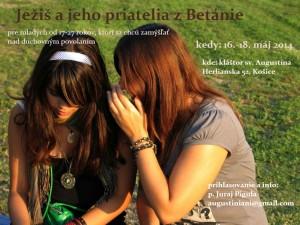 Plagat Betania 2